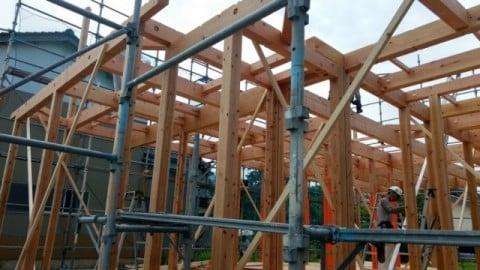 木造建築 建前の見学